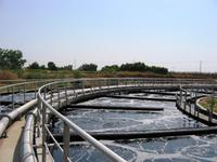Biological Wastewater Treatment Systems